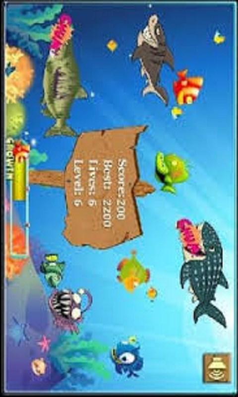 Big fish casino classic free windows phone app market for Big fish classic