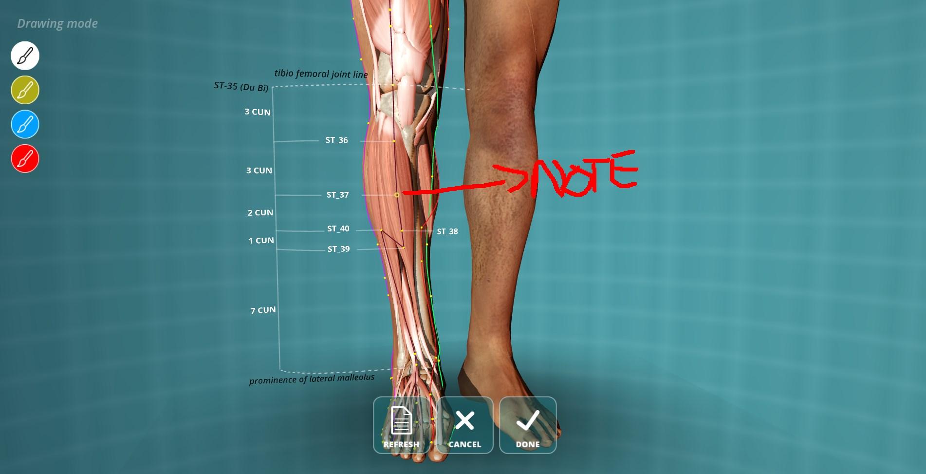 Visual Acupuncture