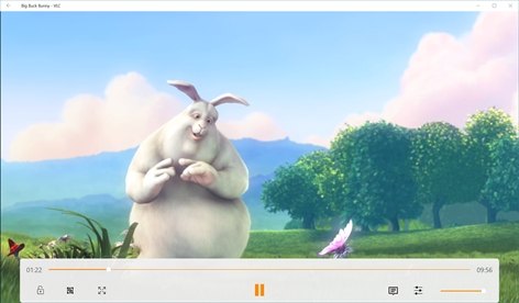 VLC Screenshot