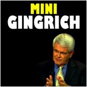 MiniGingrich