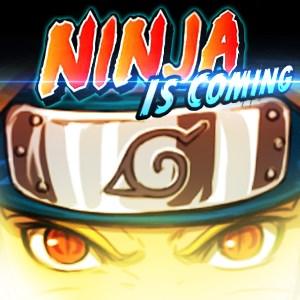 Ninja Anger