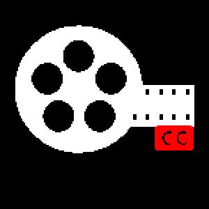 Video + Subtitle DX
