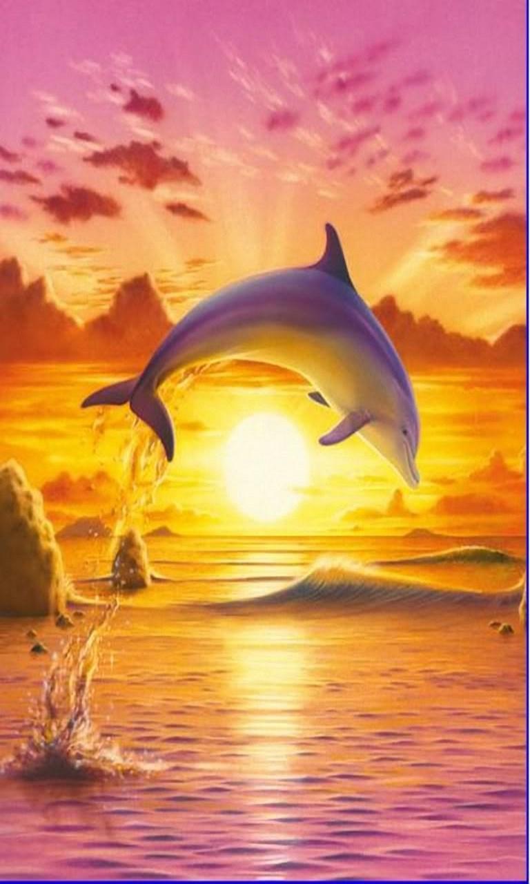 windows 1 0 wallpaper dolphin - photo #12