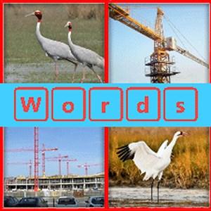 4 Pics 1 word 2016