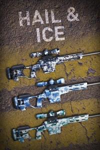 Hail & Ice Skin Pack