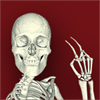 Bone Poser - 3D skeleton pose tool