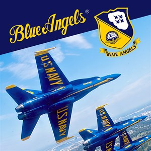 Blue Angels Aerobatic Flight Simulator Xbox One