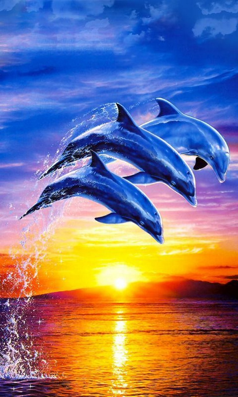 Dolphin emulator for windows10