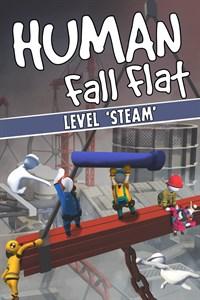 Steam Level