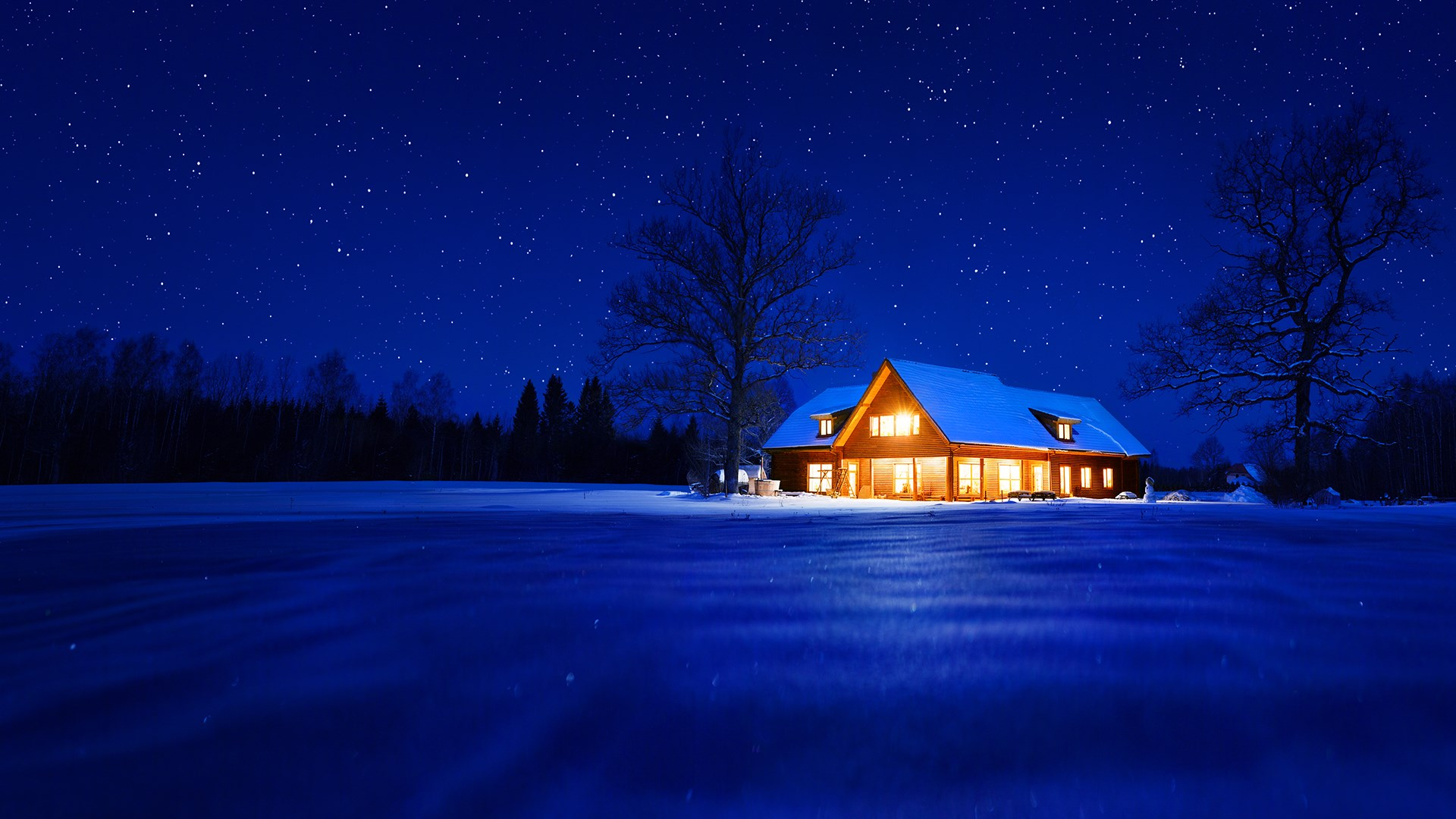 Een Warme Winter : Get warm winter nights microsoft store