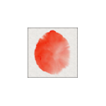 Expresii Logo