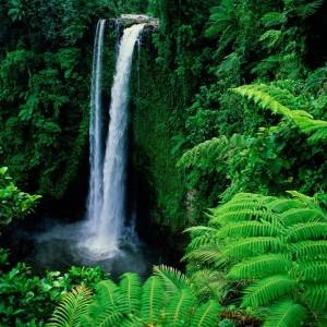 Get Waterfall Wallpaper