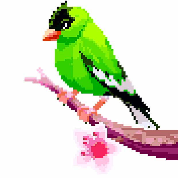 Birds Color by Number: Pixel Art, Sandbox Coloring   FREE