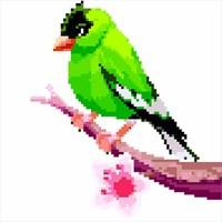придбати Birds Color By Number Pixel Art Sandbox Coloring