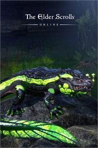 The Elder Scrolls Online: Newcomer Pack