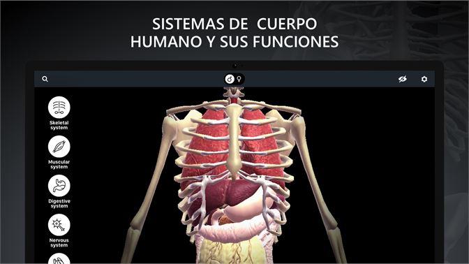 Comprar Anatomia RA: Cuerpo Humano - Microsoft Store es-ES