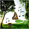 Sounds of Nature Lite