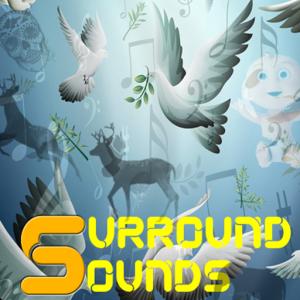 Surrounds Sounds