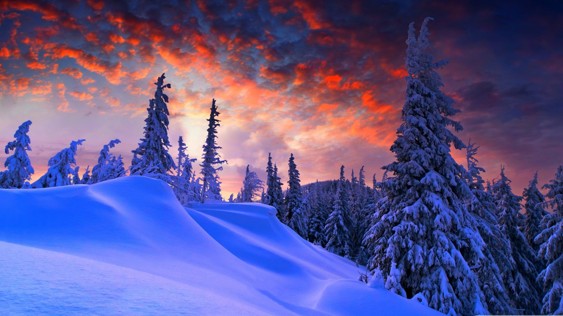 Get Winter Wallpapers Microsoft Store