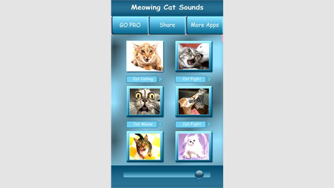 cat meow text tone