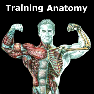 get training anatomy microsoft store