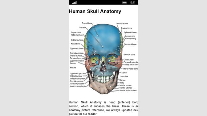Get Anatomy Atlas Free - Microsoft Store