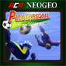 ACA NEOGEO PLEASURE GOAL: 5 ON 5 MINI SOCCER for Windows