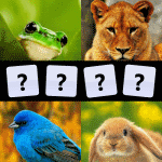 What's the Animal??