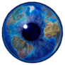 World Eye Free