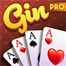 Gin Rummy Multiplayer Pro!