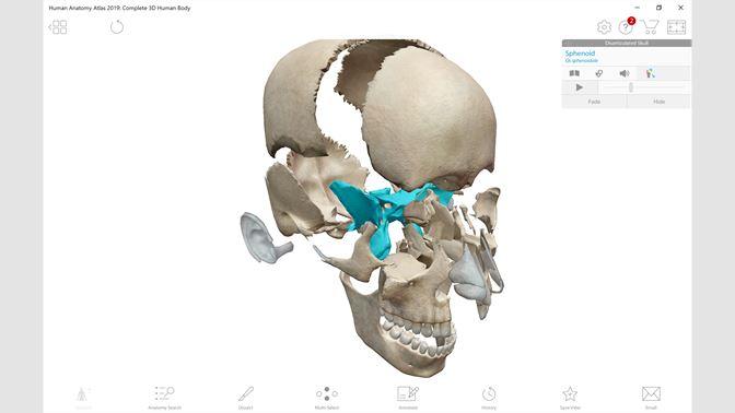Buy Human Anatomy Atlas 2019: Complete 3D Human Body - Microsoft Store en-CA