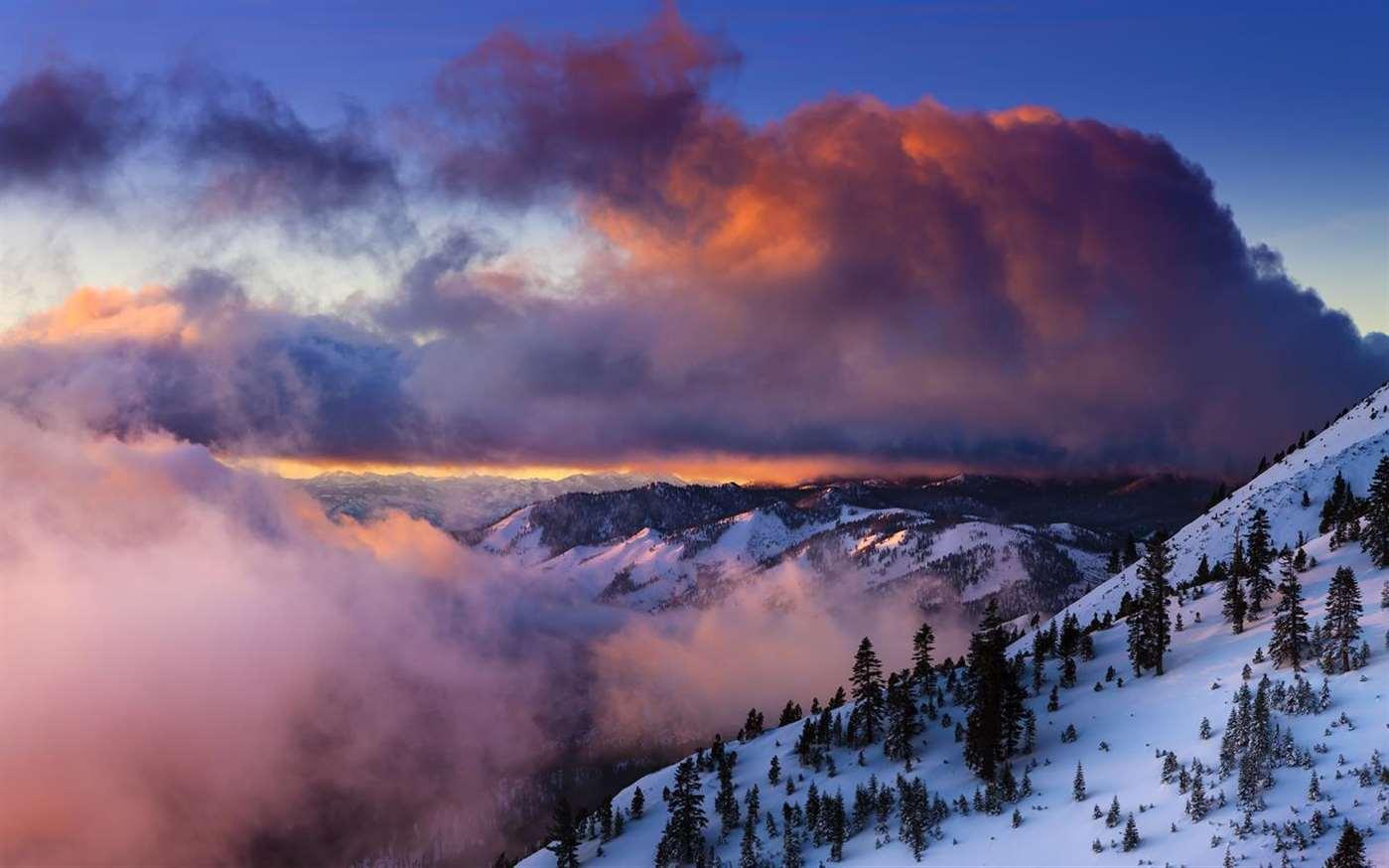 微软又发三款Win 10壁纸包:雨伞/滑雪/春天艺术的图片 第7张