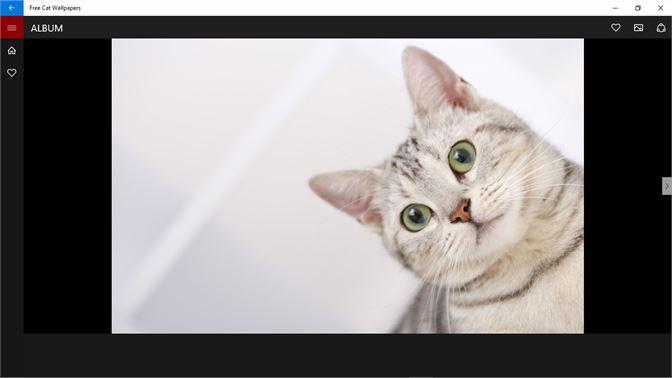 Get Free Cat Wallpapers Microsoft Store