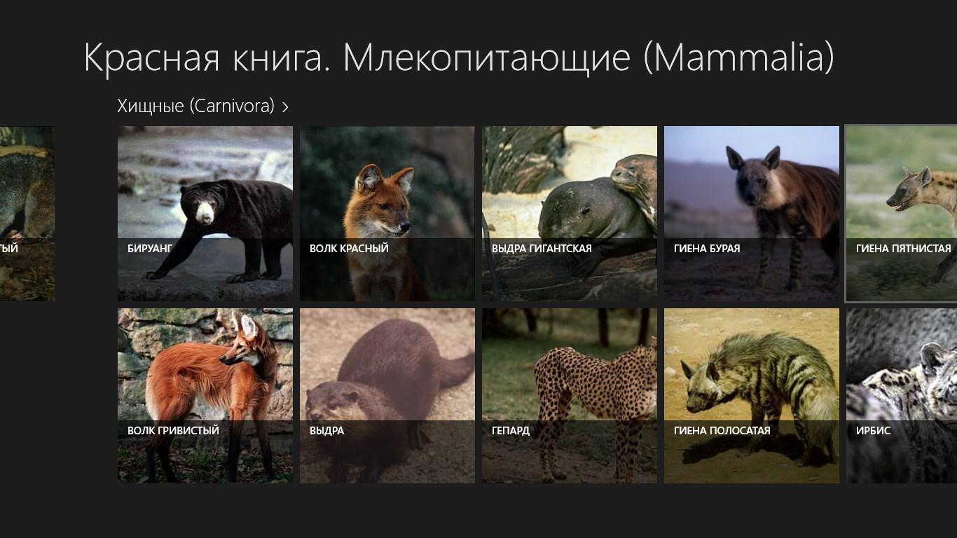 Млекопитающие красной книги россии