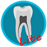 Dental Corpus ANATOMY lite
