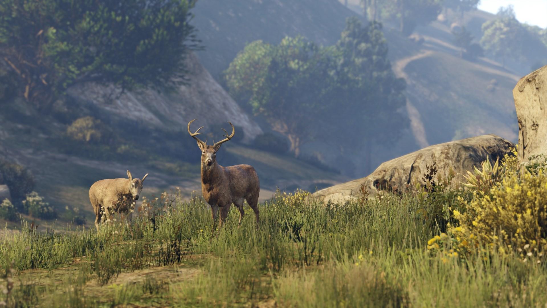 Скриншот №1 к Grand Theft Auto V Premium Edition