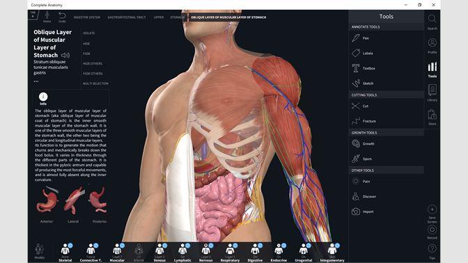 complete anatomy windows download