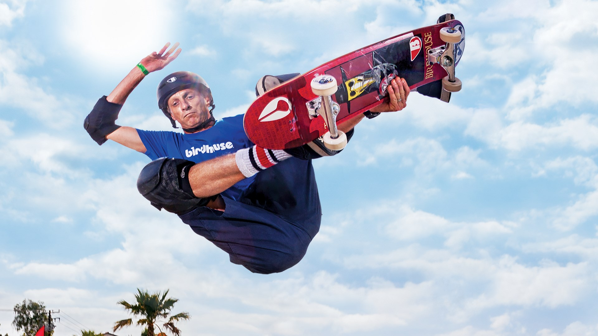 tony hawk pro skater hd pc download