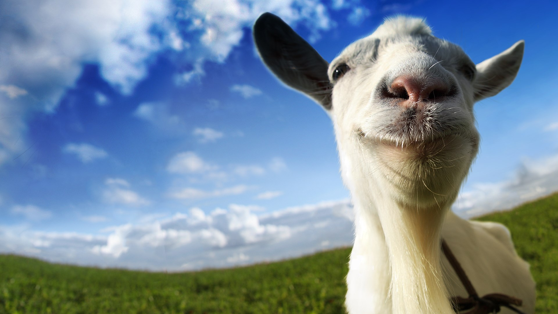 Image result for goat simulator in Game Pass June