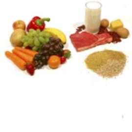 download nutrition database