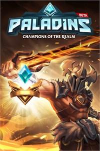 Carátula del juego Paladins VIP Pack