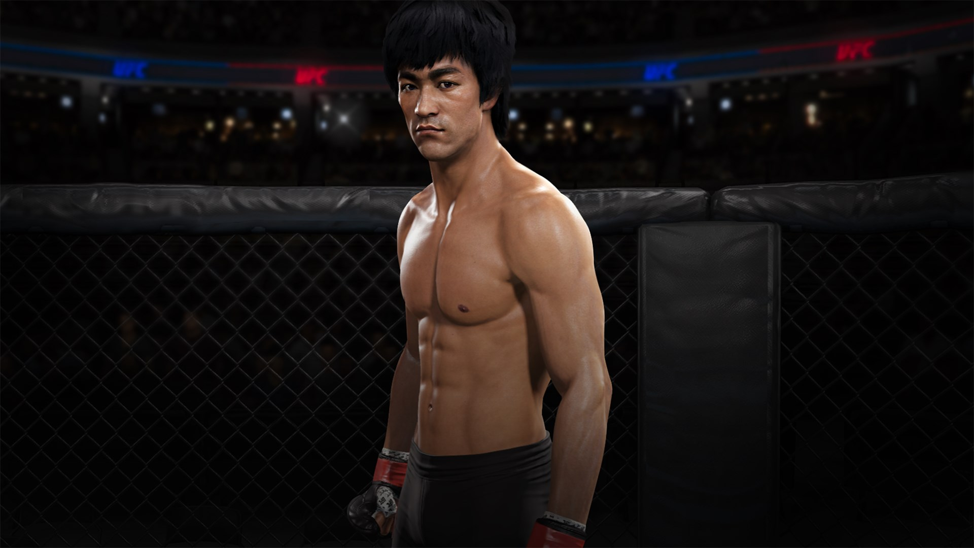 EA SPORTS™ UFC® 3 – Bruce Lee, kevytsarja