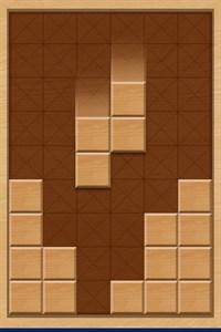 Wood Block Puzzle : 1010