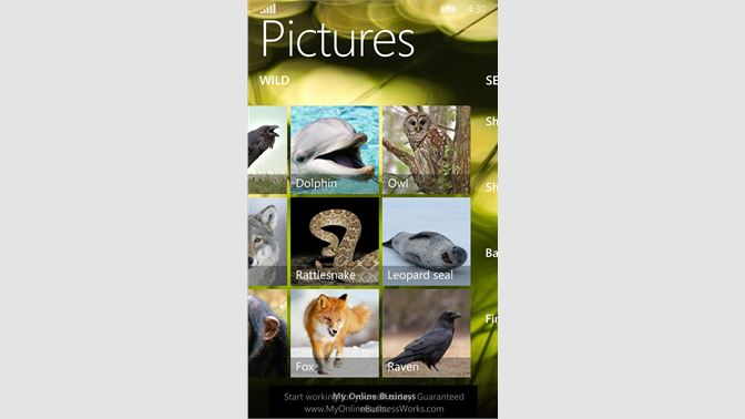 Get Animal Sounds & Pictures - Microsoft Store