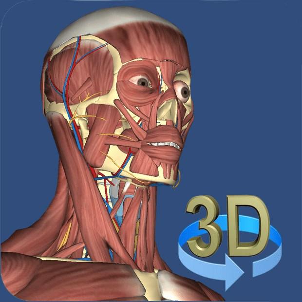 3D Human Anatomy | FREE Windows Phone app market