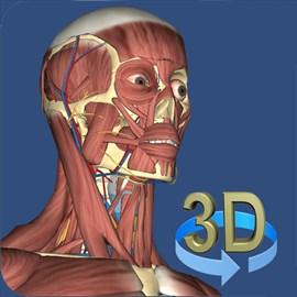 Buy 3D Human Anatomy