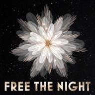 FREE THE NIGHT