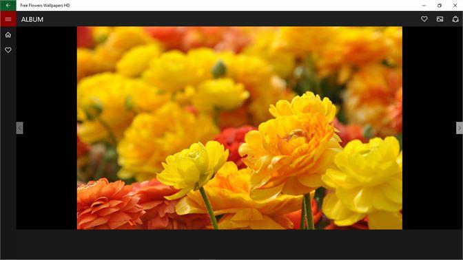 Get Free Flowers Wallpapers Hd Microsoft Store En Ph