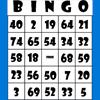 PTA Bingo Caller