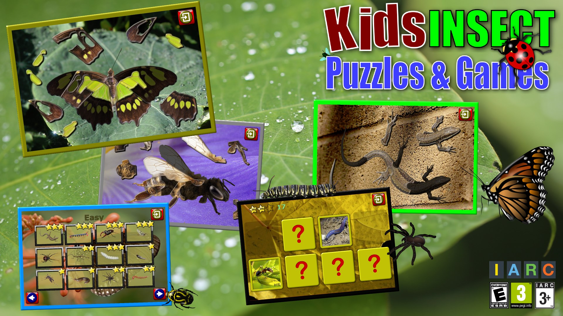 Get Kids Insect Jigsaw Puzzle and Memory Games - educational fun for ...